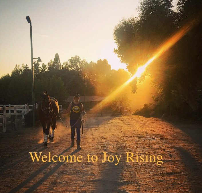 Group Learning Experience: Joy Rising!